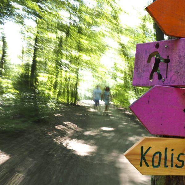 ©Heinz Schmölzer / Zugangsweg zur Aussichtswarte